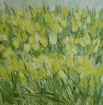 Žluté tulipány /  Yellow Tulips