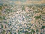 Kopretiny v trávě