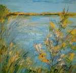Jihočeské rybníky
