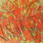 Vlčí máky v poli / Poppies in the Field