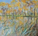 Vlkovský rybník / Pond in Vlkov