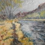 Sametová tráva podél Sázavy/Velvet grass along the river Sázava