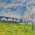 Bílé koruny stromů u Pozlovic / White treetops