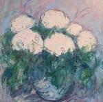Bílé hortenzie / White Hydrangea