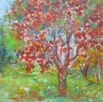 Jabloň plná jablek / Apple Tree Full of Apples