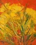 Stébla trávy mezi květy / Blades of Grass