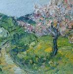 Kvetoucí jabloň (Pikovice)