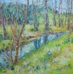 Jarní výlet (řeka Stropnice u Jakule)