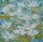 Květy leknínů