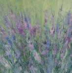 Trsy levandule / Tufts of Lavender