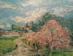 Stromy v květu (Novosedly nad Než.)