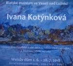 Exhibition of paintings in Veselí nad Lužnicí 2.6. - 28.7.2018